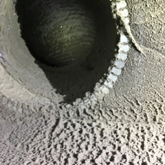 Dirt and mold hide in ducts