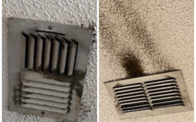 Black Spots on Vent Might Be Mold