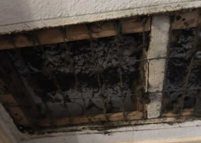 mold in duct work
