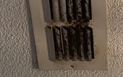 September Can Mean Mold in Your HVAC