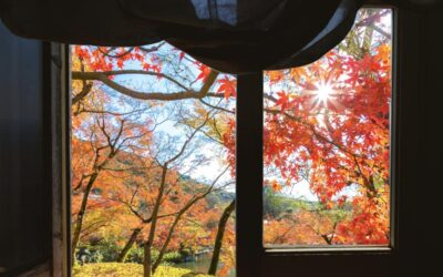 Fall Season and Indoor Air Quality